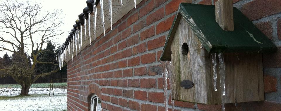 ijspegels-vogelhuisje-gesneden