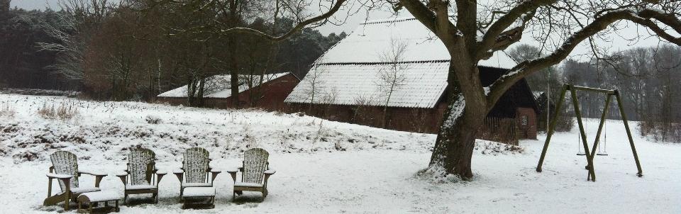 stoelen-notenboom-winter-e1448964725640